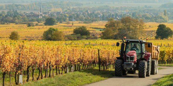 Timac Agro : pour une réponse sur-mesure et durable aux questions des agriculteurs